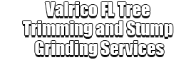 Valrico FL Tree Trimming and Stump Grinding Services Logo-We Offer Tree Trimming Services, Tree Removal, Tree Pruning, Tree Cutting, Residential and Commercial Tree Trimming Services, Storm Damage, Emergency Tree Removal, Land Clearing, Tree Companies, Tree Care Service, Stump Grinding, and we're the Best Tree Trimming Company Near You Guaranteed!